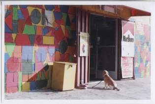 - SMOKE SHOP PUP - SILVERLAKE, CA 35mm FILM